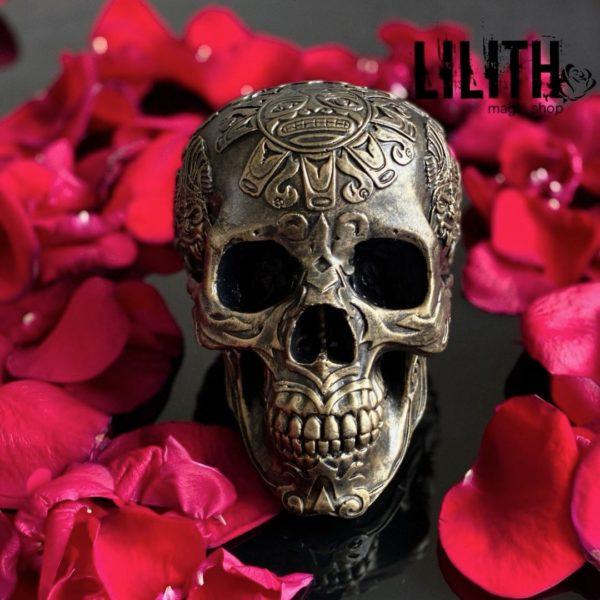 Maya Gypsum Skull – Clear Varnish Finish